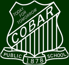 Cobar Public School - Sydney Private Schools
