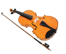 Violin Sports - Sydney Private Schools