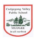 Cudgegong Valley Public School - Sydney Private Schools