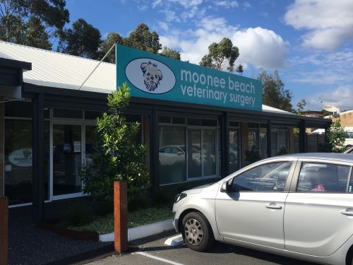 Moonee Beach Veterinary Surgery - Sydney Private Schools
